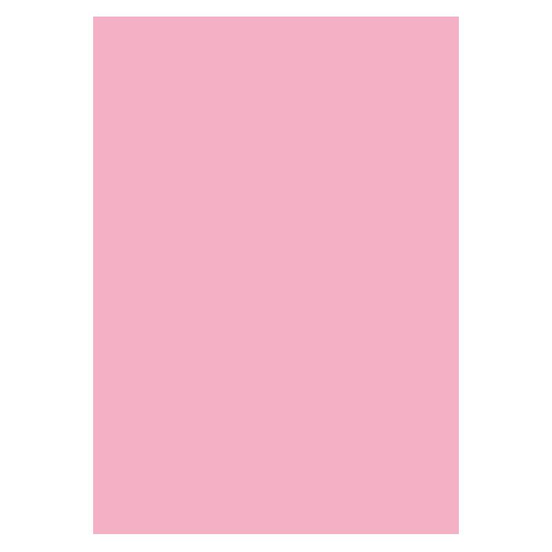 Pack de 50 subcarpetas pastel DIN A4 rosa