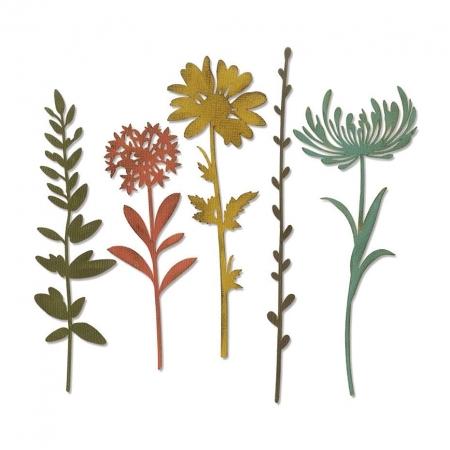 SET 5 TROQUEL THINLITS WILDFLOWER STEMS 1 BY TIM H