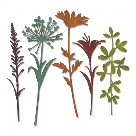 SET 5 TROQUEL THINLITS WILDFLOWER STEMS 2 BY TIM H